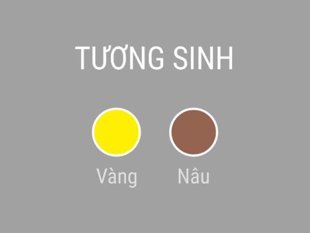 màu bản mệnh là gì